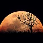 6月3日、射手座の満月は開放的になるのにぴったり!